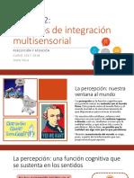 Práctica 2 - Procesos de Integración Multisensorial
