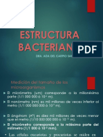 2_Estructura bacteriana