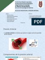 Seminario P4 Farmacos Que Modifican La PA