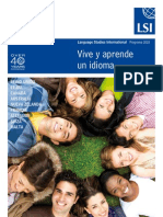 LSI UK Spanish Local Brochure