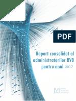 BVB_20180417112644_Raport-anual-2017-iris