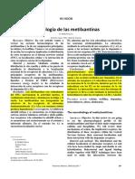 Metilxantinas - Info