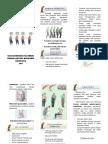 Leaflet penyuluhan Parkinson.docx