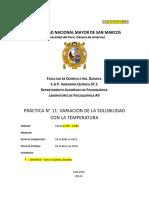 Informe 11 Química Fisicoquimica AII.docx Bolito