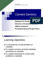 Camelid Dentistry