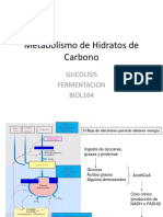 Clase 5 Metabolismo Hidratos de Carbono Glicolisis y Fermentacion Biol164 2018