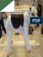 LIBRETA-DEL-CURSO-DE-PELUQUERIA-CANINA-COMERCIAL.pdf
