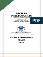 Ficha Pedagogica 2 Semana de Mayo (Autoguardado)