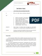 324857748-Informe-Final-Milka-2015.pdf