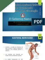 Biologia Humana Umg 2018 Sistema Nervioso