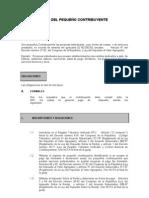 GUIA DEL PEQUEÑO CONTRIBUYENTE