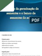 Germinacao-BancoSementes