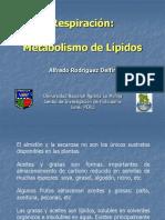 RESPIRACION-LIPIDOS