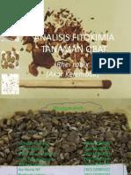 59174688-Ppt-Fitokimia-Isolasi-Rhei-Radix-1.pptx