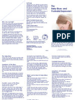 The Baby Blues and Postnatal Depression Leaflet