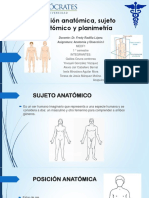 Posicion Anatómica