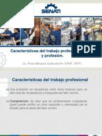 17.- Caracteristicas Del Trabajo Profesional - Etica y Profesion