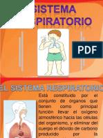 sistemarespiratorio-130304155617-phpapp02
