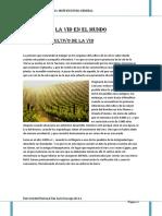 Historia de La Uva