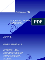 Presentasi Kasus SN