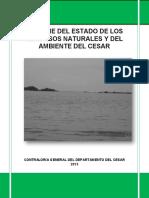Informe Ambienta; Asamblea ambiental del cesar 2013