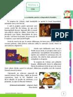 02clr_caiet_teste_en_intuitext.pdf