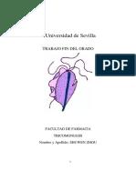 Trichomona Vaginalis