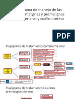Flujograma Lesiones Pre y Malignas Del CA de Ano y Cervix