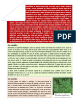 botánica - Pteridium aquilinum
