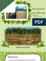 Deforestación y Desertificación
