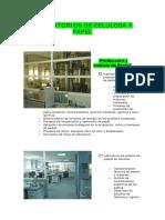 PDF.js viewer.pdf CELULOSA.pdf
