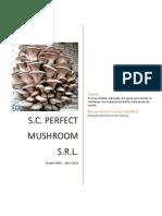 Ciupercarie