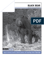 Montana 2010 Black Bear Regulations