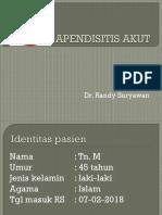 Presentation1 Appendix Randy