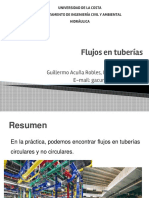 FlujoTuberias_P1