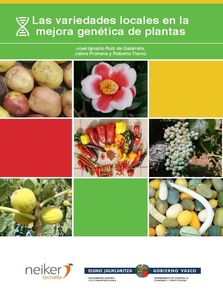 Alfalfa Trigonella Foenum Graecum 1000 Semillas Todo Sólo 1