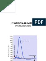 Clase 4 - NeurofisiologiÌ_a (1)