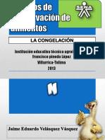 congelacin-130710011047-phpapp02