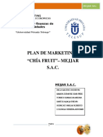Plan de MarketingChia Fruit-Final
