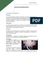 acantocefalosis
