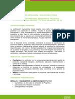 Diplomado Internacional en Gesti_n de Proyectos