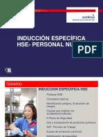Inducción Específica HSE Para Personal 2017
