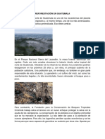Reforestación en Guatemala