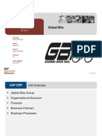 Intro ERP Using GBI GBI Slides en v3.0