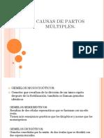 CONCEPCION Y HERENCIA.pptx