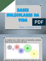 Bases Moleculares Da Vida