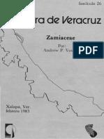 Flora de Veracruz Zamiaceae