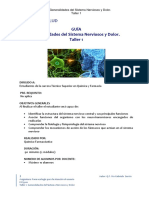 GUIA TALLER N° 1  Sistema Nervioso y Dolor FAS 3101 TSQF