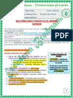 10 Traumato_bloque C_malformaciones Congenitas de Miemrro Superior_ 26-03-2018 (1)