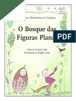 o Bosque Das Figuras Planas